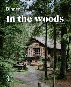 Dinner in the woods