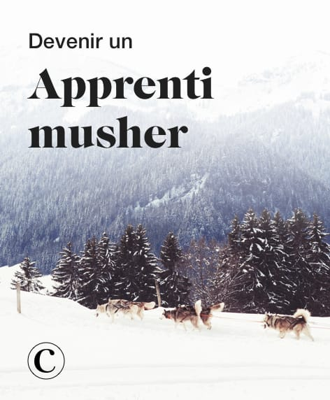 Devenir un apprenti musher