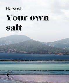 Harvest your own salt