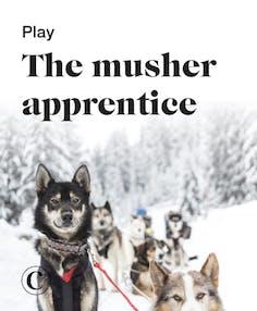 Play the musher apprentice