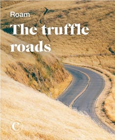 Roam the truffle roads