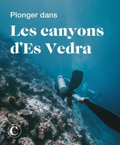 Plonger dans les canyons d'Es Vedra