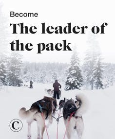 Become the leader of the pack