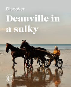 Discover Deauville in a sulky