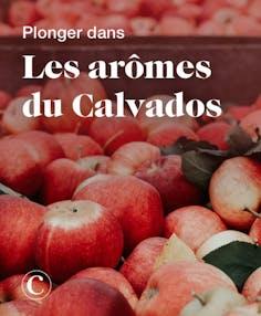 Plonger dans les arômes du Calvados