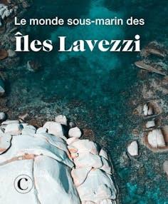 Dans le monde sous-marin des îles Lavezzi