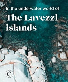 In the underwater world of the Lavezzi islands